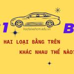 Sự khác nhau giữa bằng lái xe B1 và B2, bạn đã hiểu đúng?